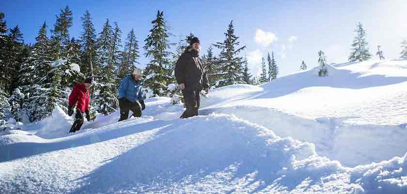 canada_whistler_0006_b0_tag_2016_snowshoeing_1.jpg